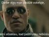 pastininkas_Slonikeinai (500x303)