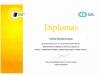 Diplomas-Inesa_2017-12