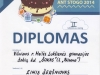 diplomas-2014-05-eimiui