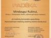 Diplomas_2017_06_02_Mindaugas