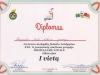 Diplomas-2017-04-07m